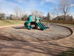 a fun play structure in a circular area with green slides