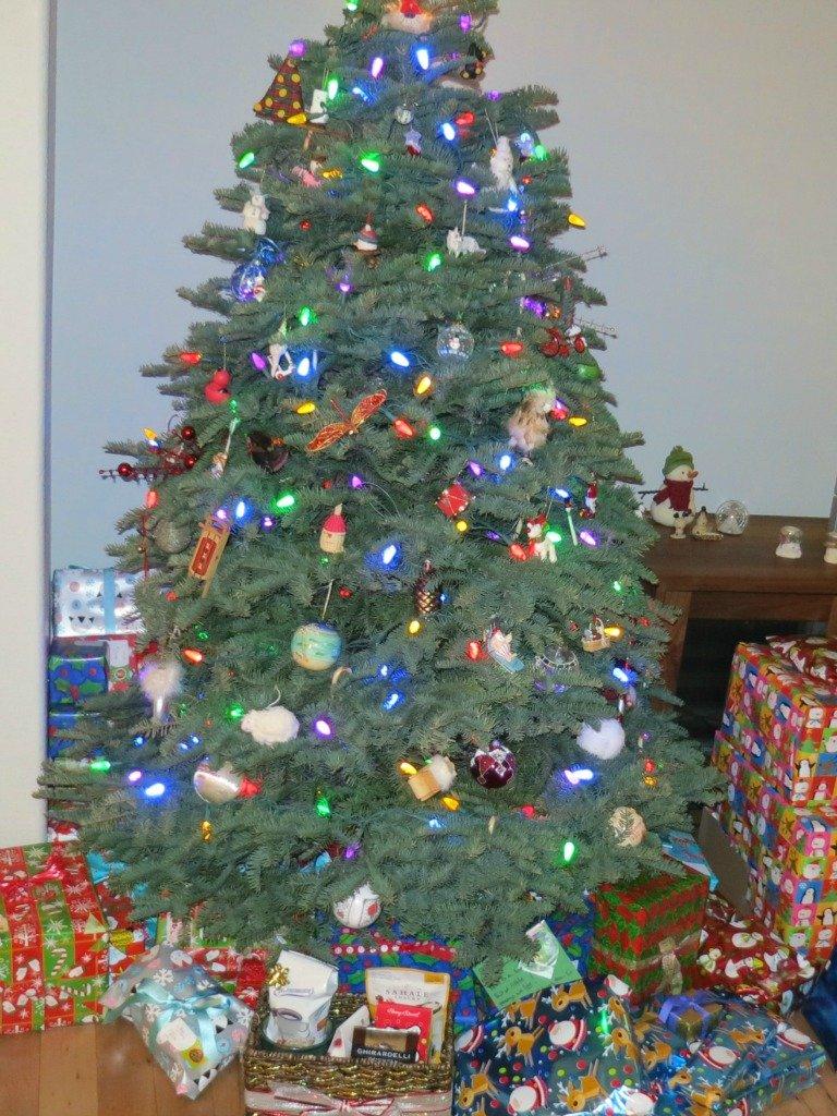 Boulder Christmas Tree Disposal - Boulder Real Estate News