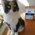 cat and rea estate books