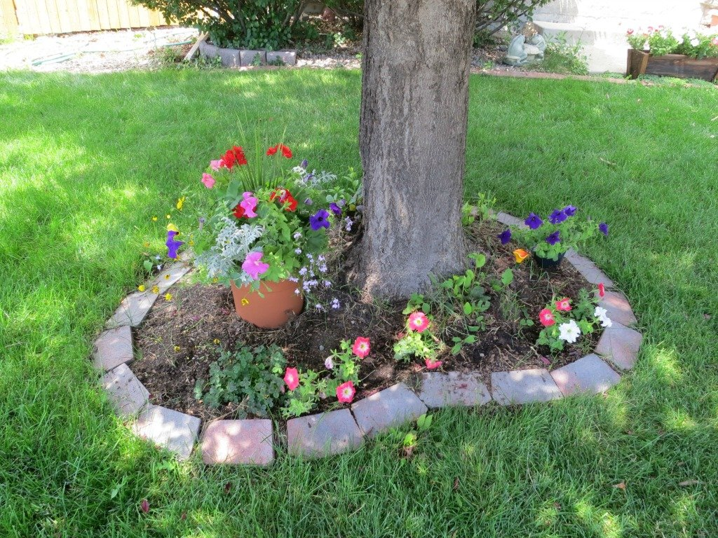 Landscaping tips and tricks boulder real estate news for Landscaping tips