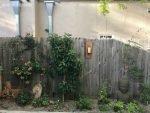 exterior fencing
