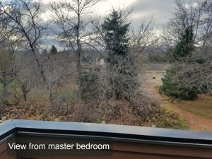 view from master bedroom 4161 westcliffe ct